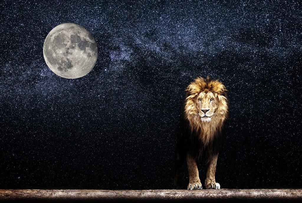 新月から満月 で願望実現を確実にする3つの過ごし方